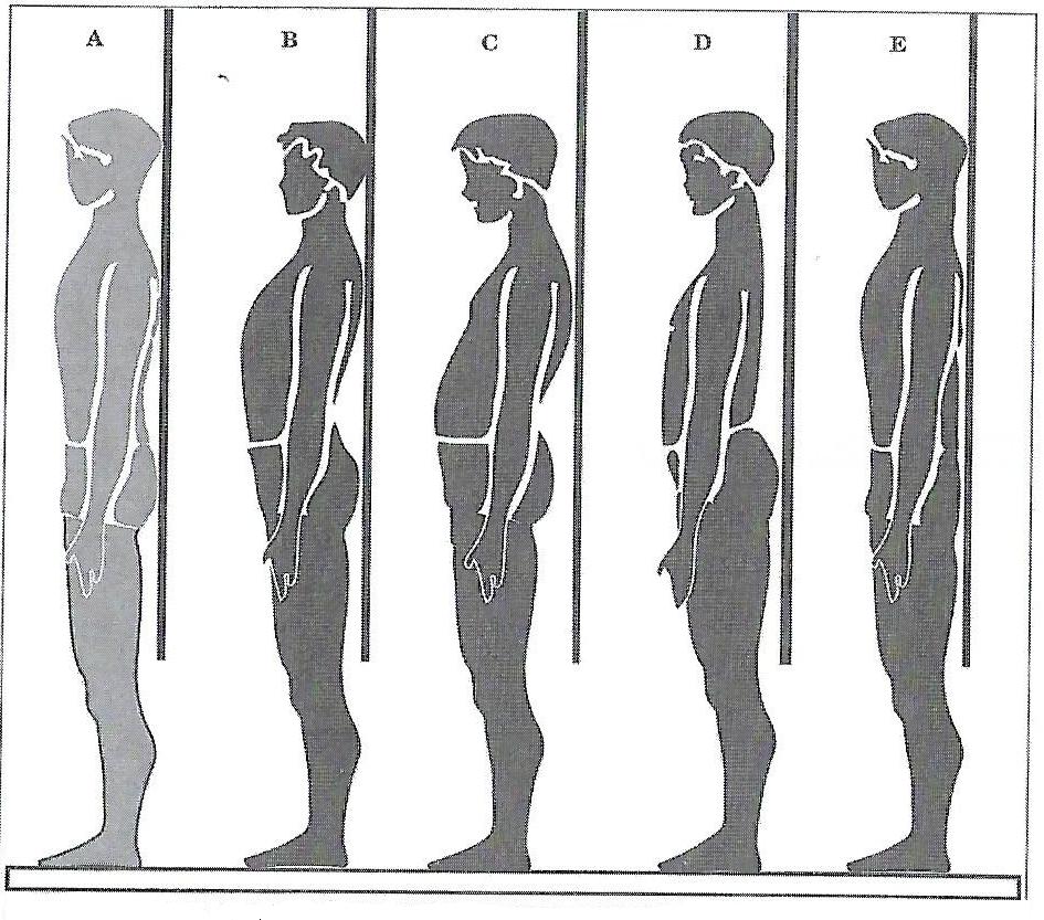 Exp posture profil